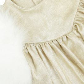 Gold Feathered Sleeve Dress